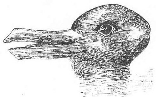 Duck or Rabbit? It depends on how you look at it.