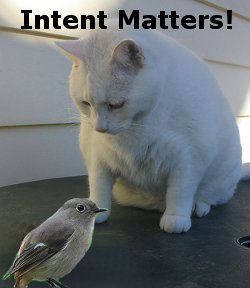 What is Your Intent?
